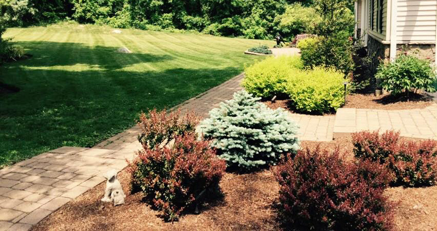 5 tips to beautify your yard on the budget with diy landscape cost savings lawn care service. Black Bedroom Furniture Sets. Home Design Ideas