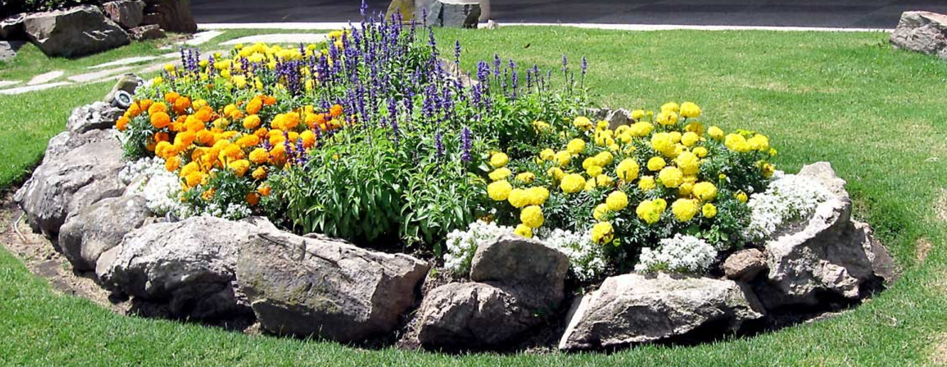 5 Tips To Beautify Your Yard On The Budget With Diy Landscape Cost